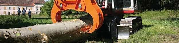 woodcracker-w